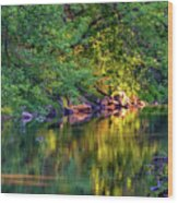 Evening On The Humber River Wood Print