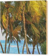 Evening Palms In Trade Winds Wood Print