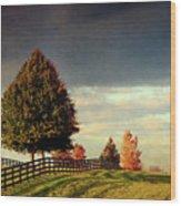 Evening Pasture Wood Print