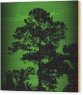 Evening Pine Wood Print