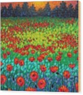 Evening Poppies Wood Print