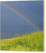 Evening Rainbow Over Pasture Field Wood Print