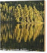 Evening Reflections On Alder Lake Wood Print