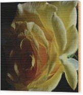 Evening Rose Wood Print