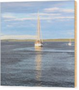 Evening Sail In Frenchman's Bay Wood Print