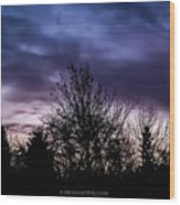 Evening Silhouettes  Wood Print