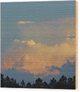 Evening Sky In Rural Florida Wood Print