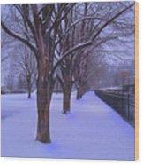 Evening Snow Path At Waterfront Park Burlington Vermont Wood Print