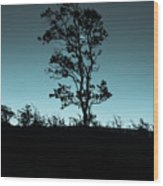 Evening Solitude Wood Print
