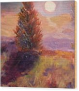 Evening Splendor Wood Print