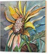 Evening Sun Flower Wood Print