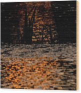 Evening Sun On Small River Wood Print