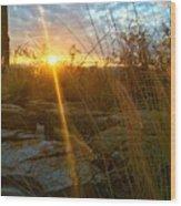Evening Sun Rays In The Desert Wood Print