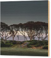 Dusk At Fort Fisher Wood Print