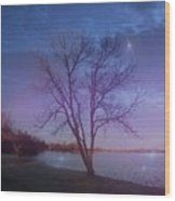 Evening Twinkles Wood Print