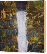 Evening Waterfall Wood Print