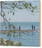Ever-changing Pelee Wood Print