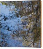 Evergaldes Master Wood Print