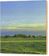 Everglades Panorama  Wood Print