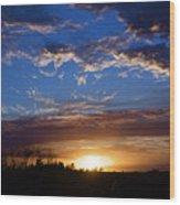 Everglade Sunset Wood Print