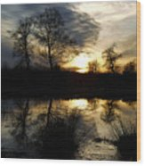 Everglade View Wood Print