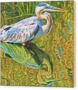 Everglades Blue Heron Wood Print