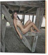 Everglades City Beauty 567 Wood Print