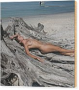 Everglades City Beauty 627 Wood Print