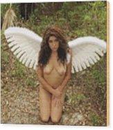 Everglades City Fl. Professional Photographer 4176 Wood Print