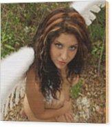 Everglades City Fl. Professional Photographer 4179 Wood Print