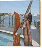 Everglades City Professional Photographer 368 Wood Print