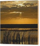 Everglades Evening Wood Print