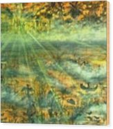 Everglades Morning Mist Wood Print