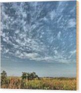 Everglades Sky Wood Print