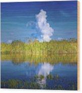 Everglades Smoke Wood Print