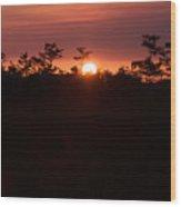 Everglades Sunset 1 Wood Print