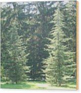 Evergreen Dance Wood Print