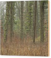 Evergreen Fog Wood Print