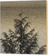 Evergreen Lake Wood Print