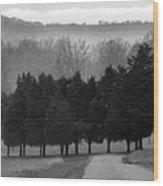 Evergreen Mist Wood Print