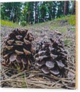 Evergreen Pinecones Wood Print