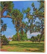 Evergreen Plantation Wood Print