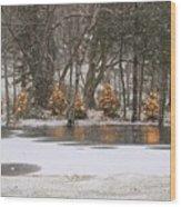 Evergreen Reflection Wood Print