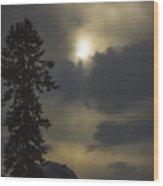 Everlasting Spring 2 Wood Print