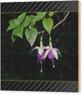 Evining Flowers Wood Print