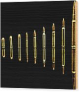 Evolution?-gold Edition Wood Print