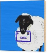 Ewe Have Mail Wood Print