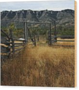 Ewing-snell Ranch 1 Wood Print by Larry Ricker