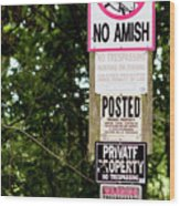 Excessive Property Signs Wood Print