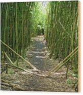 Exlporing Maui's Bamboo Wood Print